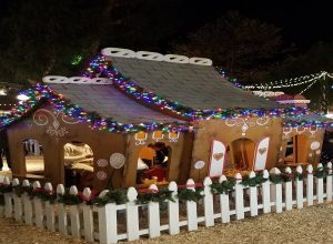 Winter Fantasy Sawdust Festival Laguna Beach arts crafts gingerbread house holiday fun