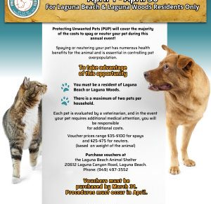 Annual Low-Cost Spay and Neuter Program